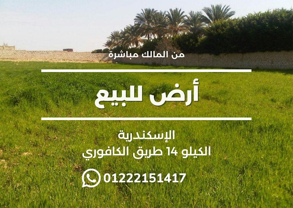 For Sale Real Estate Postcard-min